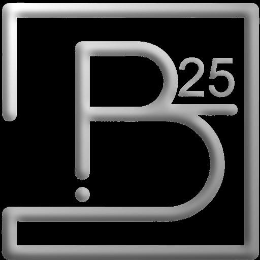 B25 Private Investigation